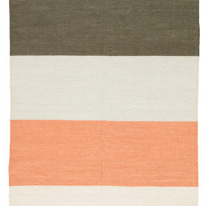 Jaipur Living Swane Indoor/ Outdoor Stripe Coral/ Green Area Rug (2'X3')