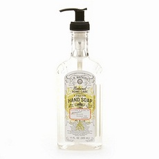 J.R. Watkins Foaming Aloe & Green Tea Hand Soap(6x9 Oz)